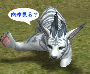 blog0171.jpg