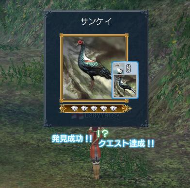 blog0502.jpg