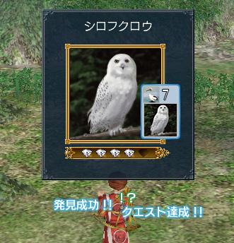 blog0680.jpg