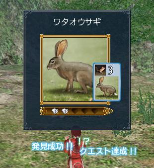 blog0781.jpg