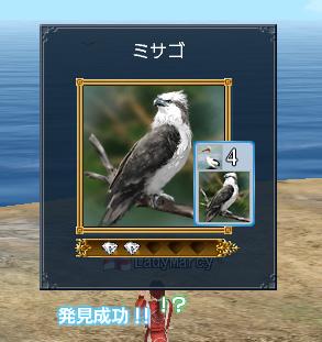 blog0800.jpg