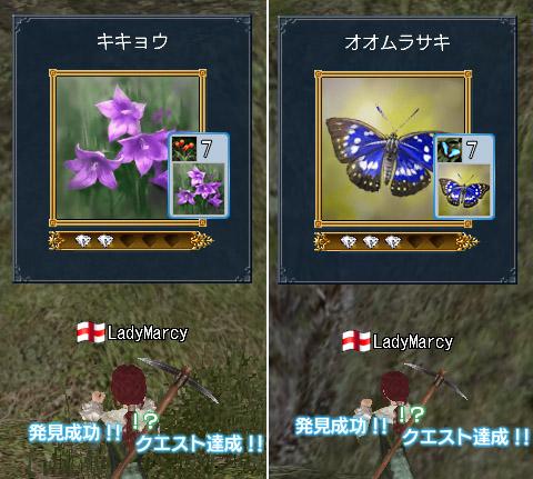 blog1289.jpg