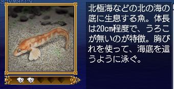 blog2443.jpg